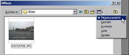 Datei öffnen 8.8