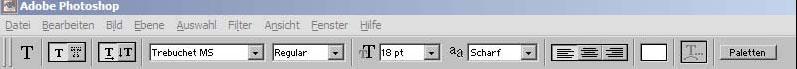 Schrift ins Foto mit Adobe Photoshop einfuegen 14.10