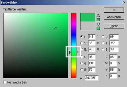 Schrift ins Foto mit Adobe Photoshop einfuegen 14.38